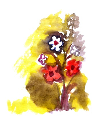 Artistic flowers painted in watercolor  isolated on white Stock Photo