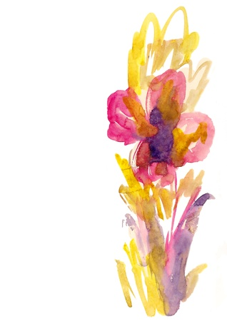 Flowers painted in watercolor  isolated on white Stock Photo