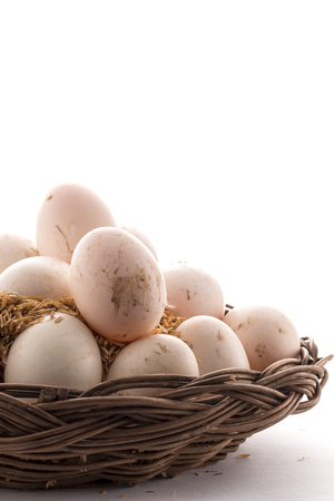 duck egg: Duck egg