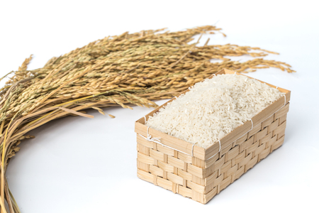 gasp: White rice and wooden basket gasp Malin plant raw rice grains.