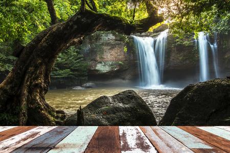 Wood planks floor. Beauty nature background Stock Photo