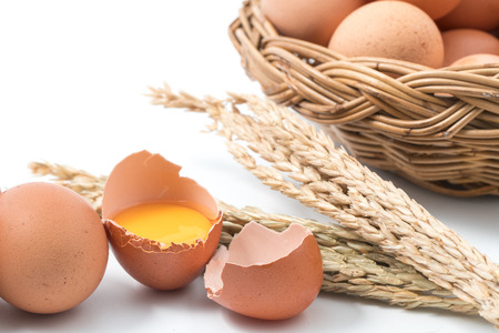albumin: egg isolated on white background