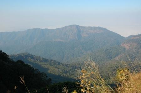 cima montagna: Erba e Mountain Top V