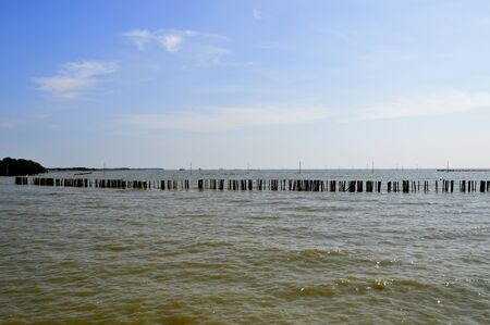 Seawall made by staking the concrete poles as the barrier to reduce the coastal erosion problem at the coastal area of Bangkok Bay