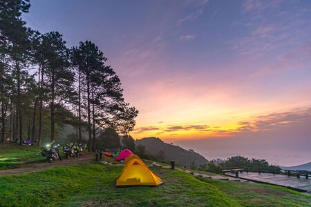 Camping orange tent at National Park in Northern,Thailand. 版權商用圖片 - 135982549