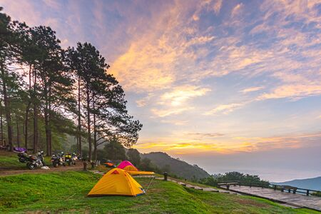 Camping orange tent at National Park in Northern,Thailand. 版權商用圖片 - 135982579