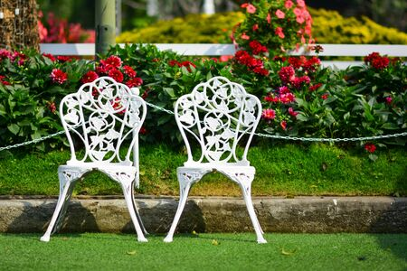White chair in the flowers garden. Imagens