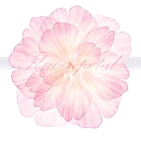 수채화 꽃 라운드 패턴. 핑크 꽃입니다. 벡터화 수채화 그리기.
