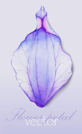 the petal: Watercolor element Purple flower petal