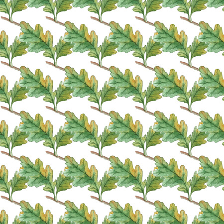 acorn nuts: Watercolor Seamless pattern  with oak leaves