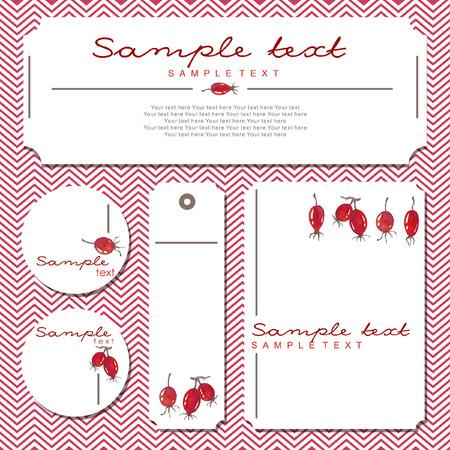 eglantine: Vector card with rosehips Illustration