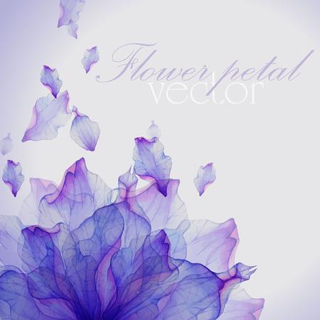 flores moradas: Tarjeta de la acuarela con el pétalo de una flor púrpura. Vectorizado dibujo de la acuarela. Vectores