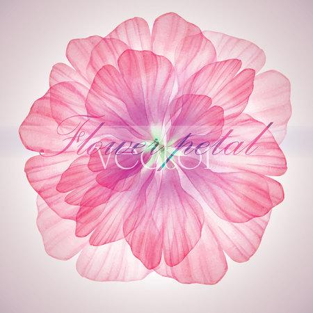 flor: Acuarela patrones circulares florales.