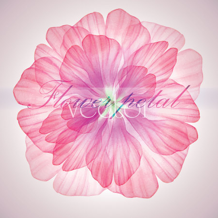 pink flower: Watercolor floral round patterns.