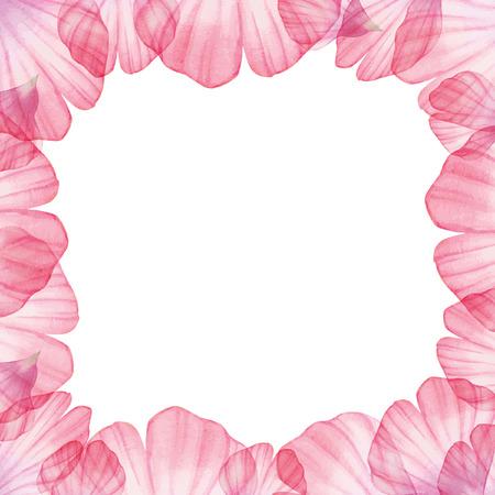 flower petal: Watercolor floral Frame with flower petal Illustration
