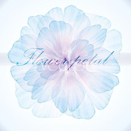 수채화 꽃 빈티지 카드 일러스트