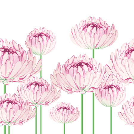 Watercolor seamless border  with pink chrysanthemum