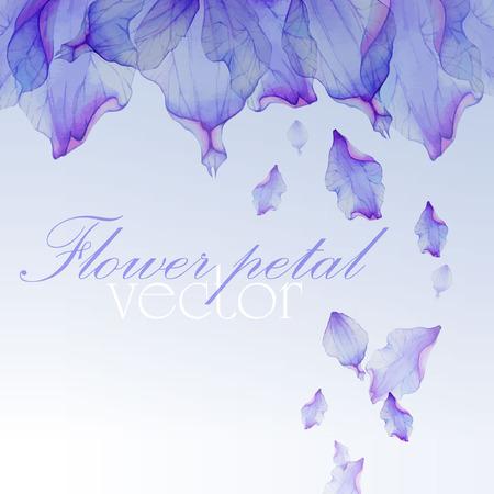flores moradas: Acuarela tarjetas de felicitaci�n florales. Vectores