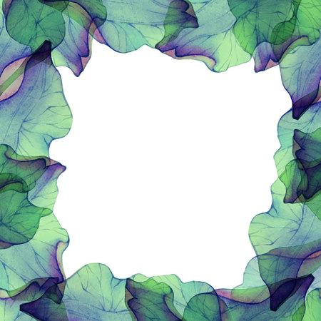 petal: Watercolor frame with flower petal.