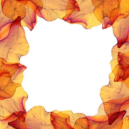 flower petal: Watercolor frame with orange flower petal.