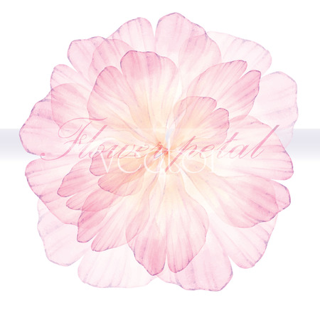 Watercolor floral round patterns. Pink flower.