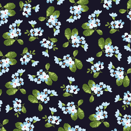 patrones de flores: Patrón floral transparente con pequeñas flores azules en fuentes negras.