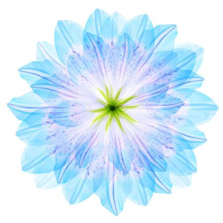blue petals: Floral round pattern of blue flower petals