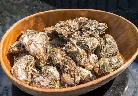 mother of pearl: Oysters in wooden bowl Stock Photo
