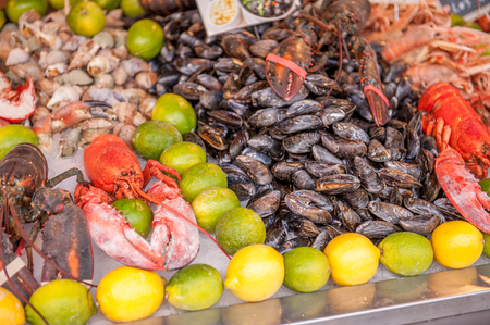 sea food: Shellfish and fresh sea food on a market table