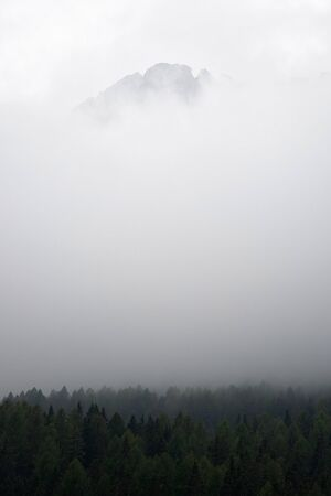 green trees on mountain under white clouds during time nature awesome nice new beautifully photo