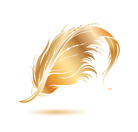 Golden bird feather icon. Decorative design element isolated on white background. Vector illustration.