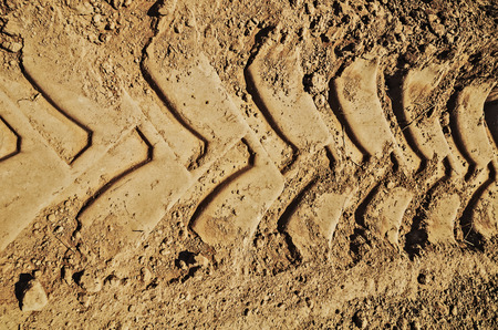 muddy tracks: Muddy road with vehicle tire tracks