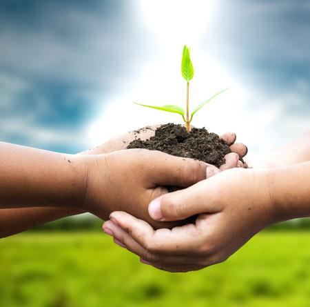 kind houden jonge plant in handen tegen de lente groene achtergrond. Concept van de ecologie