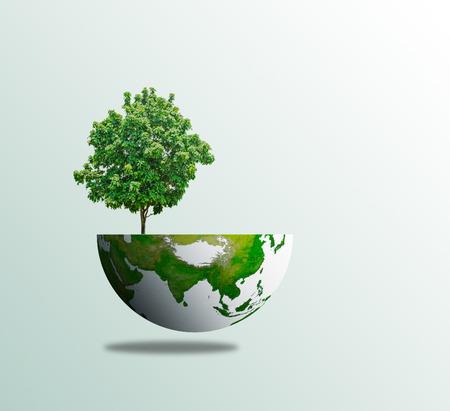 World tree day concept eco environment