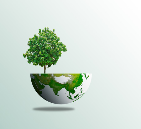 World tree day concept eco environment