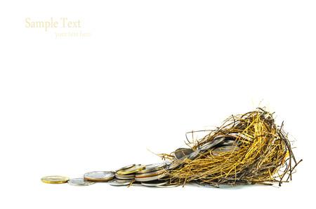 retirement nest egg: Nest Full of Money for Savings Stock Photo