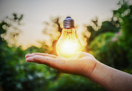 sol radiante: bombilla de luz contra el fondo de la naturaleza puesta de sol. concepto de energía Foto de archivo