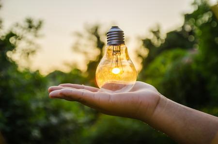 luz natural: bombilla de luz contra el fondo de la naturaleza puesta de sol. concepto de energía Foto de archivo