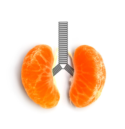 concept lung orange on white background