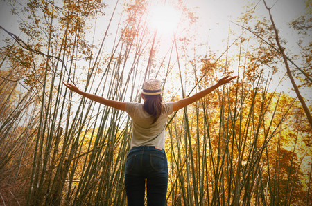 young woman freedom travel and cheering open arms at mountain under bamboo forest  with sunlight
