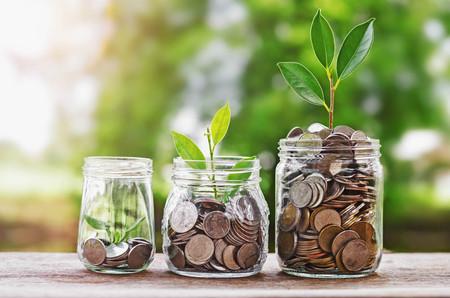 투자 금융 개념 및 녹색 자연 햇빛과 유리 항아리에 동전을 성장하는 식물