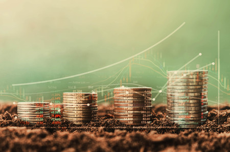 stack of coin growth money and tree, concept  Data chart of finance indices on nature background