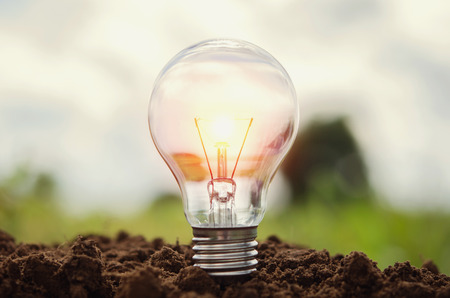 light bulb growing in soil concept idea power energy in nature Stock Photo