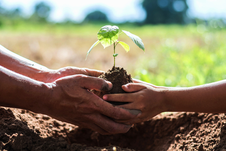 father and children help plant trees to help reduce global warming.