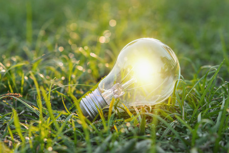 concept eco. close up lightbulb on green grass with sunset and bokeh background