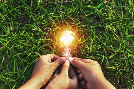 Hand drei, die Glühlampe auf Gras hält. Öko-Konzept macht Energie in der Natur Standard-Bild - 93972612
