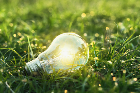 concept eco. lightbulb on green grass with sunset and bokeh background