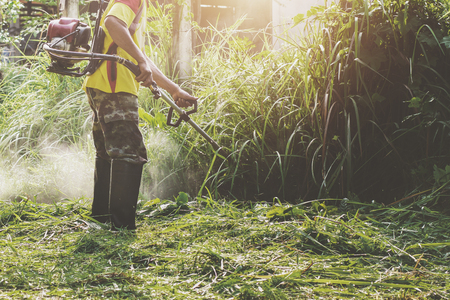 farmer cuting grass at farm