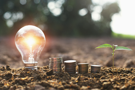 light bulb with small tree and money stack on soil in nature background. concept saving energy