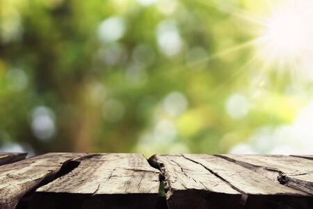 empty wood with blur tree bokeh and sunshine background Stok Fotoğraf - 125651548